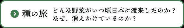 伝統野菜について-種の旅-どんな野菜がいつ頃日本に渡来したのか?なぜ、消えかけているのか?