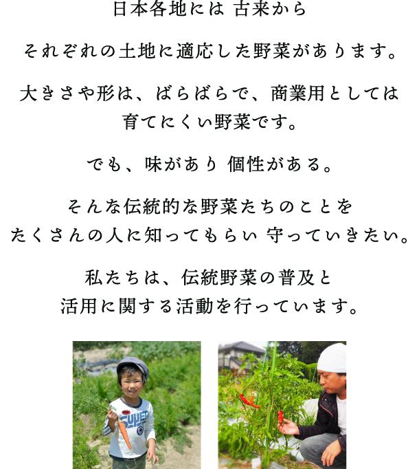 日本各地には 古来からそれぞれの土地に適応した野菜があります。大きさや形は、ばらばらで、商業用としては育てにくい野菜です。でも、味があり 個性がある。そんな伝統的な野菜たちのことを たくさんの人に知ってもらい 守っていきたい。私たちは、伝統野菜の普及と 活用に関する活動を行っています。